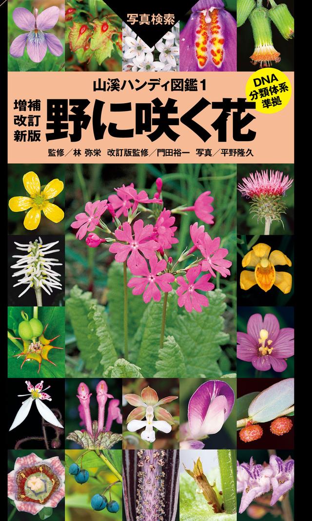 山溪ハンディ図鑑 野に咲く花